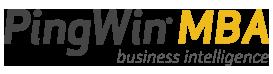 Logotipo PingWin MBA